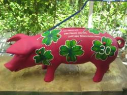 Ferkel- Sparschweine_7