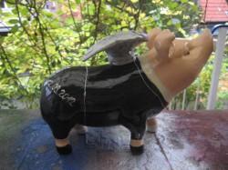 Sparschwein halb und halb_3
