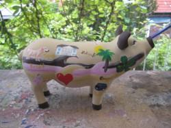 Sparschwein für Danni_1