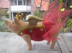 Sparschwein im roten Tutu_1