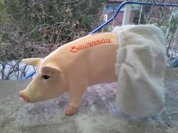 Sauna-Sau_1