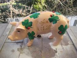 Sparschwein zur Geburt_1