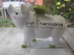 Sparschwein mit Logo_1