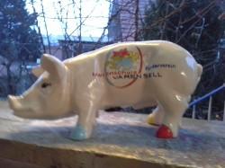 Sparschwein für den Förderverein_1